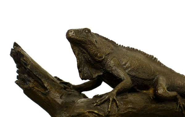 Iguana on a Branch - Modern Animal Sculpture - signed Milo