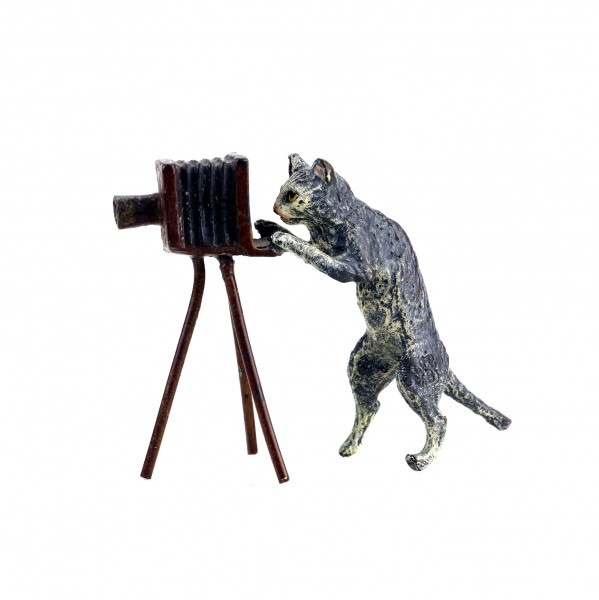 Vienna Bronze - Cat With Camera - Stamped - Hand-Painted